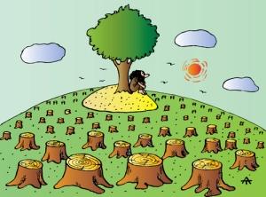 ecologist, cadouri pentru ecologist